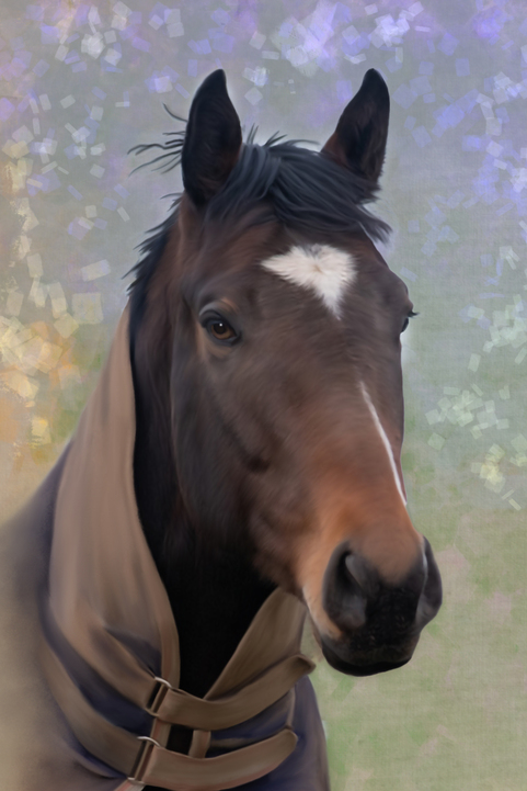 Paintings of horses on large canvases