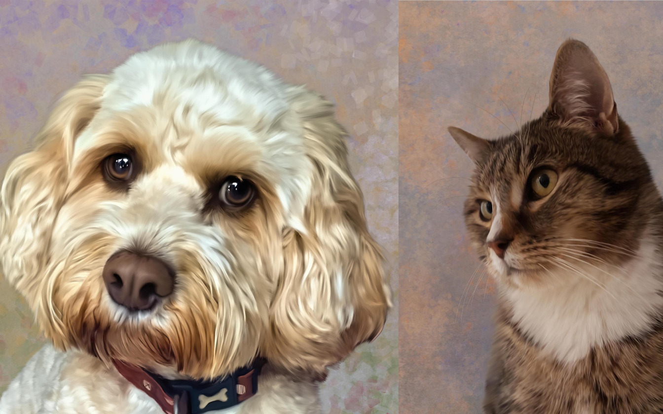 Digital Paintings to celebrate your pet, digital pet portraitss in Stafford